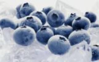 Как правильно заморозить чернику: сохраняем пользу