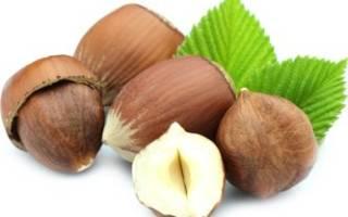 Чем полезен фундук — свойства ореха