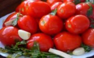 Квашеные помидоры в банке быстрого приготовления — очень вкусные