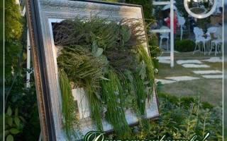 Сайт о саде, даче и комнатных растениях