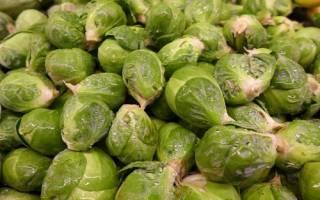 Брюссельская капуста: секреты заморозки полезного овоща