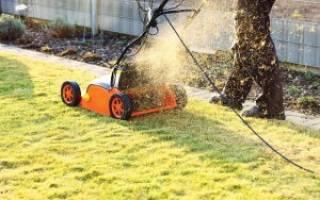 Особенности мульчирования газона газонокосилкой: советы и рекомендации