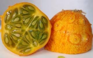 Кивано: что такое и как его едят — польза и вред африканского огурца