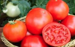 Как правильно собрать семена помидоров в домашних условиях