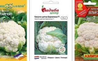 Лучшие сорта цветной капусты