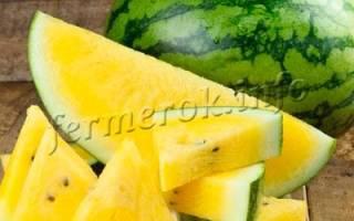 Желтый арбуз — сорта и выращивание