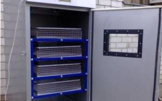 Обзор инкубатора для яиц «Универсал 45»