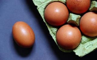 Сырые яйца: польза или вред