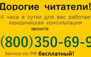 Сбор грибов в Крыму в 2019 году