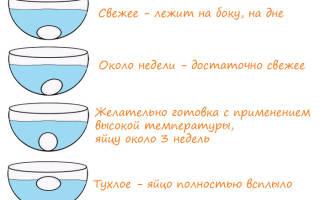 Как проверить свежесть яиц в воде и другие способы проверки
