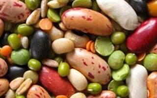 Список бобовых культур