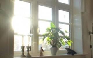 Естественное и искусственное освещение для комнатных растений