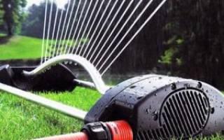 Выбираем дождеватели для полива огорода