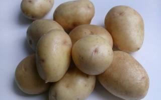 Сорт картофеля Невский: особенности, посадка и уход