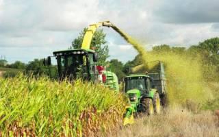 Силосование кормов: научные основы и преимущества