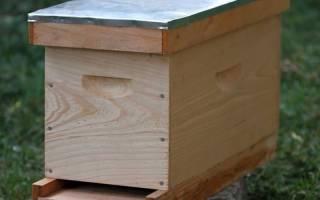 Нуклеус: что это такое? Для чего пчеловодам необходим нуклеус