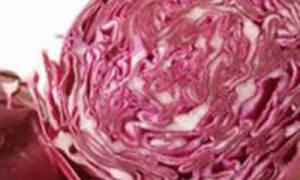 Краснокочанная капуста на зиму, лучшие рецепты