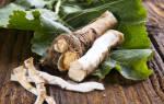 Делаем пикантные заготовки — корни хрена на зиму